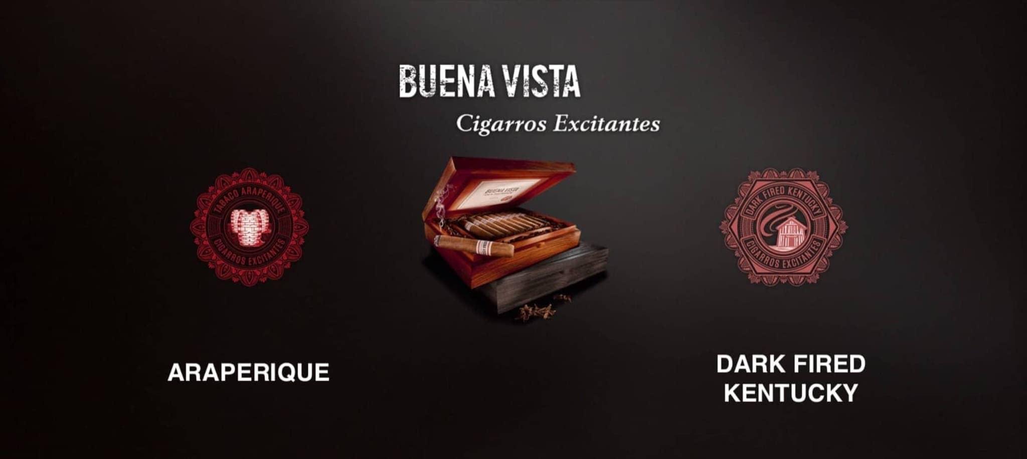 Buena Vista - Der besondere Longfiller 4